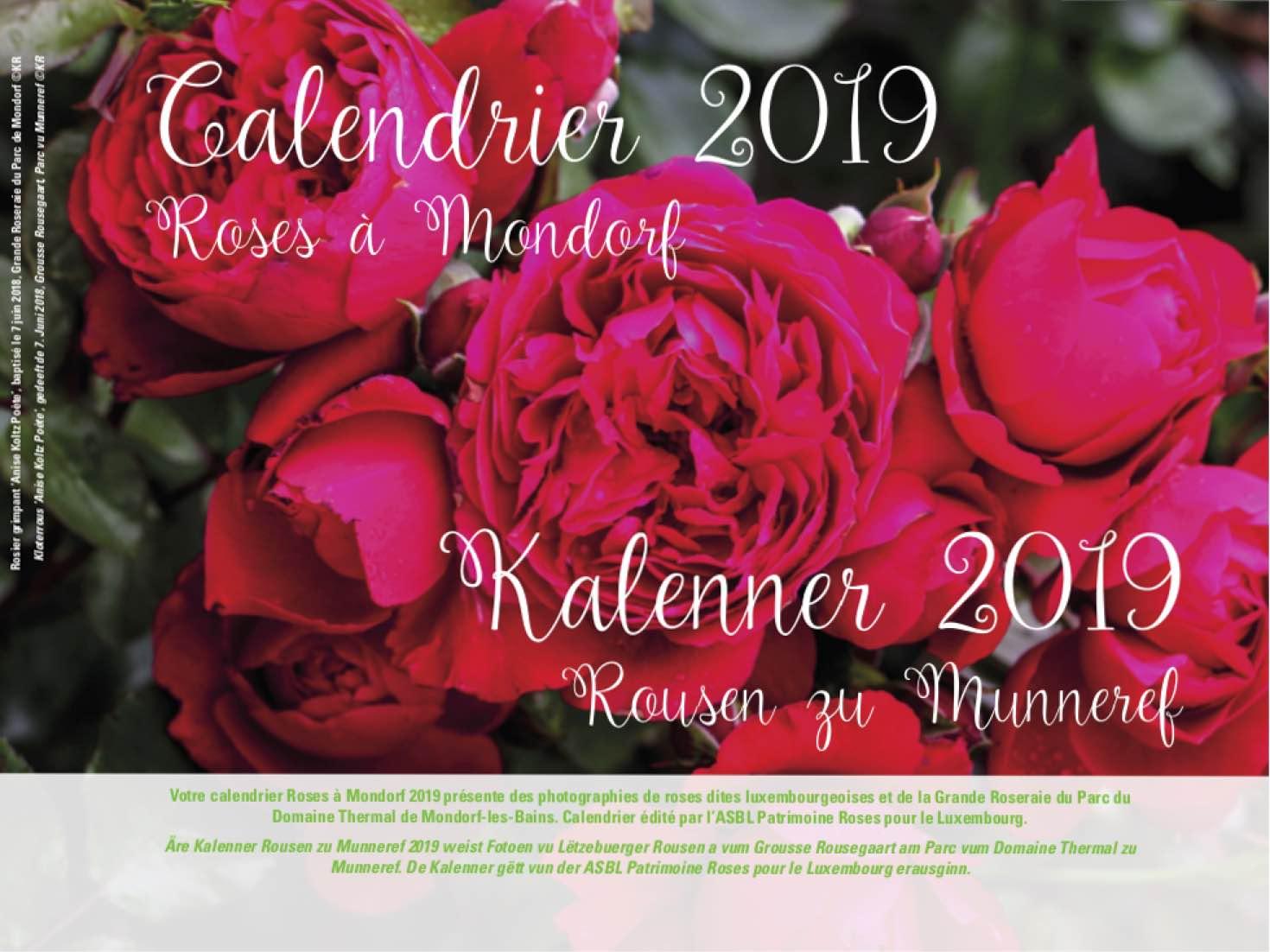 Achat Calendrier 2019.Acheter Le Calendrier 2019 Rousen Zu Munneref Patrimoine